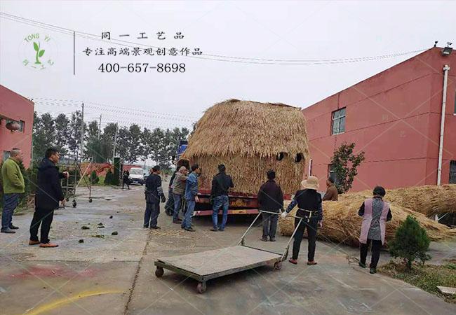 苏州稻大型草工艺品发货